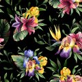Watercolor seamless pattern with purple, yellow and blue iris and tropical flower and green leaves