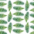Watercolor seamless pattern with tropical ferns