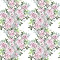 Watercolor seamless pattern. Wild roses mixed background. Romantic wallpaper.