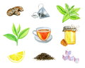 Watercolor set of ginger, teabag, mint, tea leaf, tea cup, bank of honey & honeycomb, lemon, dry tea and refined sugar