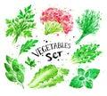 Watercolor set of green vegetables