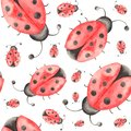 Watercolor pattern of insects, ladybugs, bedbugs, beetles with leaves on a white background.