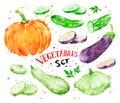 Watercolor set of vegetables.