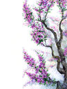 Watercolor spring background. Purple flowers on tree branches Royalty Free Stock Photo