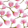Watercolor spring seamless pattern with blooming magnolia tree isolated on white background.