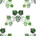 Watercolor style green grape vines seamless Royalty Free Stock Photo