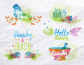 Watercolor symbols beauty elements on bright flowers twigs nature stylized as freehand drawing with Stock Photography