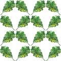 Watercolor three oak green leaf acorn seed seamless pattern background Royalty Free Stock Photo