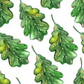 Watercolor three oak green leaf acorn seed seamless pattern background Royalty Free Stock Photo