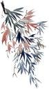 Watercolor tree branch