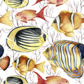 Watercolor tropic sea pattern. Hand painted tropic fish: angelfish, butterflyfish, clownfish and coral isolated on white Royalty Free Stock Photo
