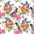 Watercolor tropical australian vector pattern Royalty Free Stock Photo