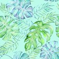 Watercolor tropical large leaves