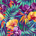 Watercolor tropical leaves and flowers seamless pattern. Royalty Free Stock Photo