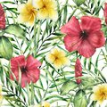 Watercolor tropical pattern with plumeria and hibiskus. Hand painted flowers with palm leaves isolated on white Royalty Free Stock Photo