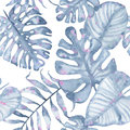 Watercolor tropical seamless pattern hand painted with leaves of indigo palm monstera isolated on white background