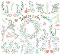 Watercolor Vector Collection of Florals Royalty Free Stock Photo