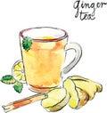 Watercolor vector ginger tea