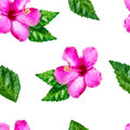 Watercolor vector seamless pattern with pink tropical hibiscus f Royalty Free Stock Photo