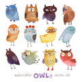 Watercolor vector set. 12 Funny owls