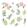 Watercolor vintage floral set. Spring or summer decoration floral bohemian design. Watercolor isolated. There are poppy