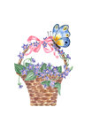 Watercolor wicker basket with violets isolated on white background.