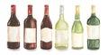 Watercolor wine bottles set.