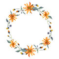 Watercolor wreath. Orange daisies with leaves