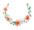 Watercolor wreath. Red daisies with leaves