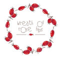Watercolor wreath of rose hips Royalty Free Stock Photo