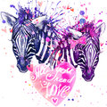 Watercolor zebra illustration cute zebra love card valentine heart valentine poster all you need is love text Stock Photo