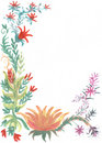 Watercolors flowers sketch Royalty Free Stock Image