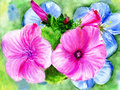 Watercolors, flowerses Stock Photos