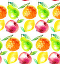 Watercolour apple and orange citrus fruit illustration. Royalty Free Stock Photo