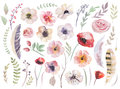 Watercolour boho set of flowers. Flloral vintage collection Royalty Free Stock Photo
