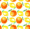 Watercolour orange and lemon fruit illustration. Royalty Free Stock Photo