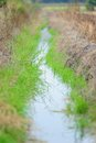 Watercourse of agriculture Royalty Free Stock Photos