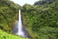 Waterfall - Akaka falls Hawaii Stock Photo