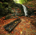 Waterfall in Autumn Forest Stock Photo