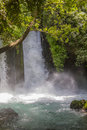 Waterfall banias nature reserve in israel river hermon northern Stock Photo