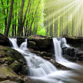 Waterfall beautiful in spring forest Stock Images