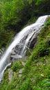 Waterfall in bi feng xia scenic spot yaan sichuan china Stock Photography