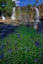 Waterfall Chute de la Lily Royalty Free Stock Photo