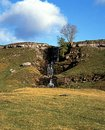 Waterfall cray yorkshire dales on cow close north england uk great britain western europe Stock Images