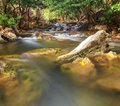 Waterfall creek in summer forest in kanchanaburi thailand Stock Image