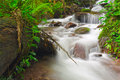 Waterfall in deep forest of thailand phayao Stock Image