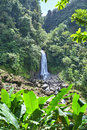 Waterfall in Dominica Royalty Free Stock Photo