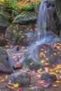 Waterfall Fallen Autumn Leaves Royalty Free Stock Photo