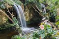 Waterfall and flowers in a Dutch tropical garden Royalty Free Stock Photo
