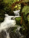 Waterfall flowing in tropical jungle Stock Photos